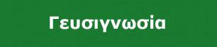 geysignvsia_GR copy