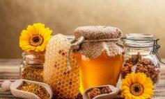 Πρόπολη - Το θαύμα των μελισσών