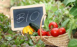 Τα οφέλη των βιολογικών προϊόντων στην υγεία