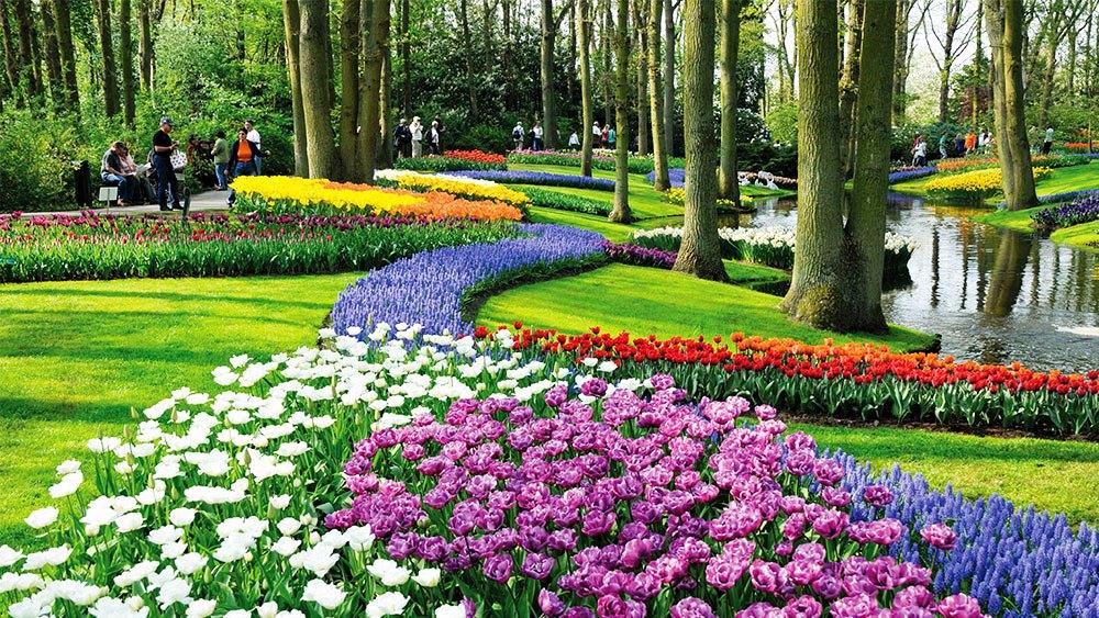 https://hellenic-land.com/wp-content/uploads/2017/05/Garden-Keukenhof-Netherlands.jpg