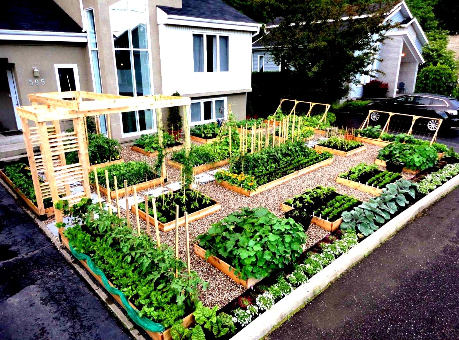 Как организовать сад