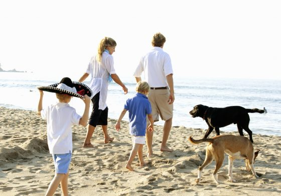 Πως Να Γίνεις Καλύτερος/η Πατριός-Μητριά